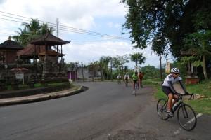 Bali Cycling (5)